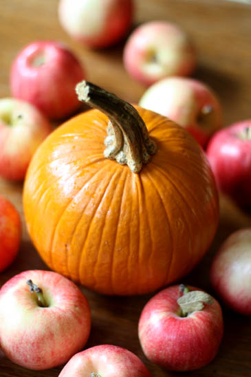 Autumn equinox a time of gratitude balance veronica for Where can i go apple picking near me